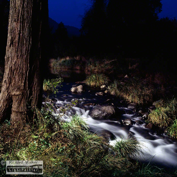 Light painting photography richard walker lightpainter cougal park northern new south wales long exposure photography light painting photography mozeypictures Image collections