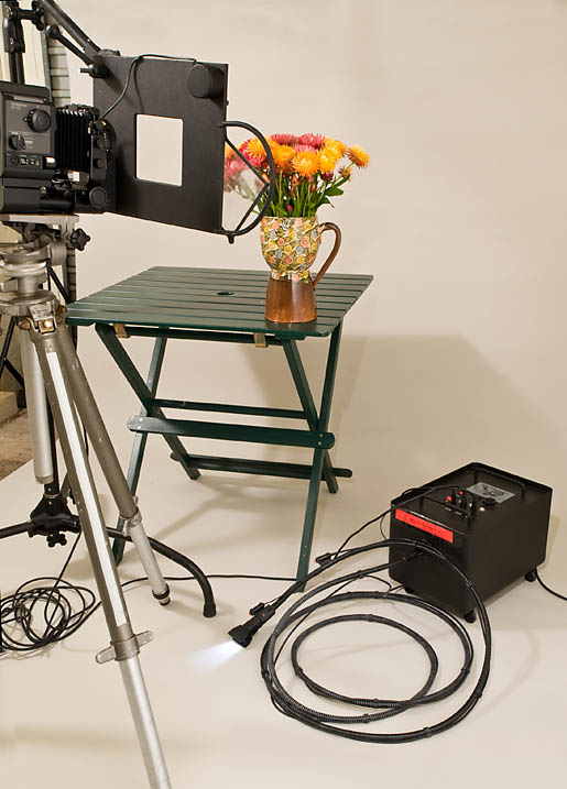 Hosemaster Light Painting System, light painting, studio portraits of flowers, floral portraits
